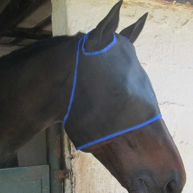 Fly Mask Ear Holes