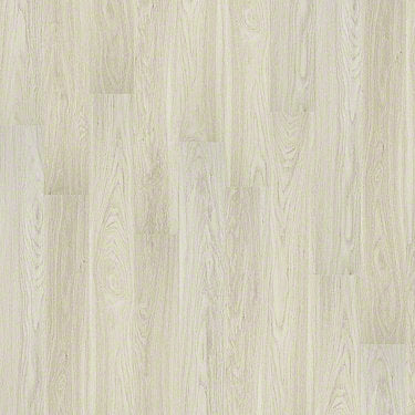 Product Sample of Shaw Floors Legacy Plus Resilient Residential Unit flooring in the color Majestic available at Standard Paint and Flooring.