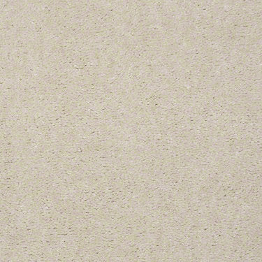 Winsome Residential Carpet