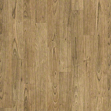 Product Sample of Shaw Floors Apollo Resilient Residential Roll flooring in the color Lindus available at Standard Paint and Flooring.