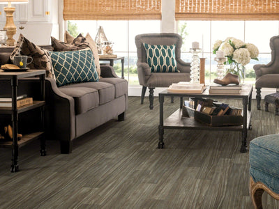 Room Image of Shaw Floors Apollo Resilient Residential Roll flooring in the color Thebes available at Standard Paint and Flooring.