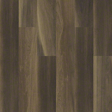 Product Sample of Shaw Floors Cathedral Oak 720C Plus Resilient Residential Unit flooring in the color Ravine Oak available at Standard Paint and Flooring.