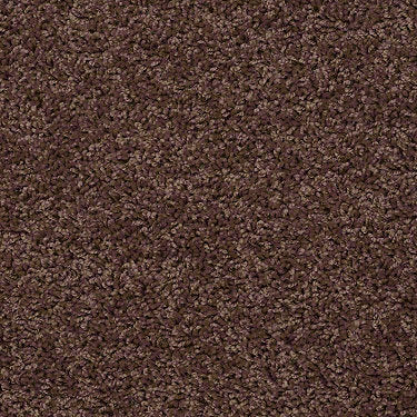Everyday Easy Residential Carpet