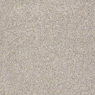 Brushed Texture I Residential Carpet