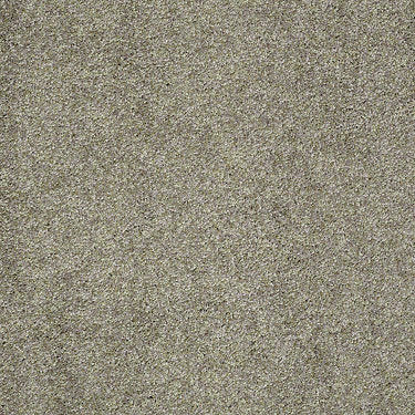 Brushed Texture II Residential Carpet