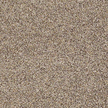 Spirited Texture II Residential Carpet