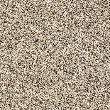 Spirited Texture III Residential Carpet