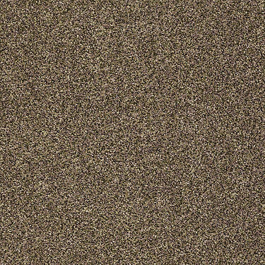Tailored Texture I Residential Carpet