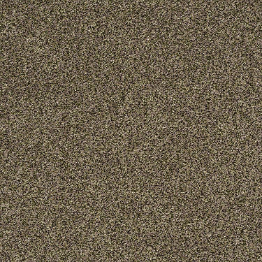 Tailored Texture II Residential Carpet