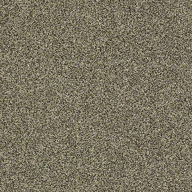 Tailored Texture III Residential Carpet