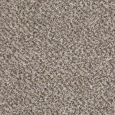 Decorate With Me I Residential Carpet
