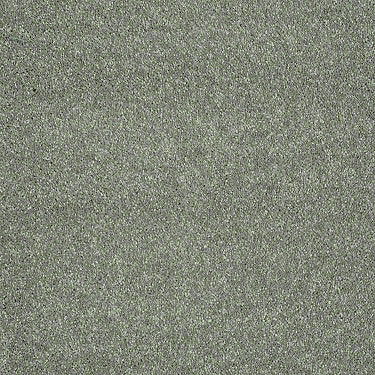 Sing With Me II Residential Carpet