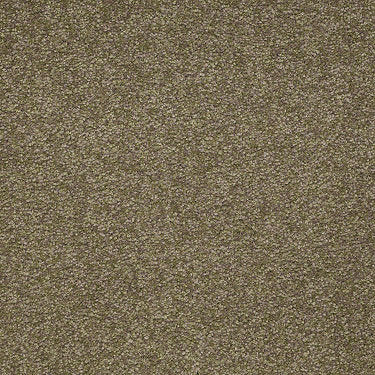 Ultimate Expression 15' Residential Carpet