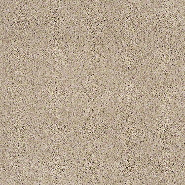 Premium Twist Residential Carpet