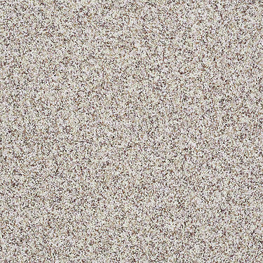 Premium Twist Accent Residential Carpet