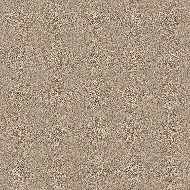 Magnificent Texture Tonal Residential Carpet