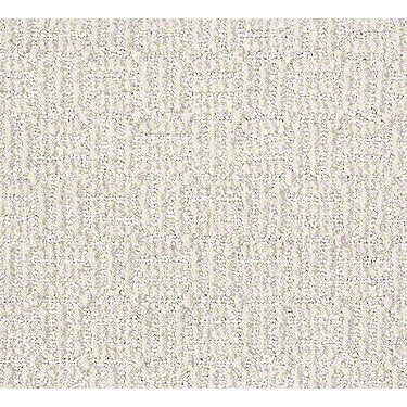 Casual Accent Residential Carpet