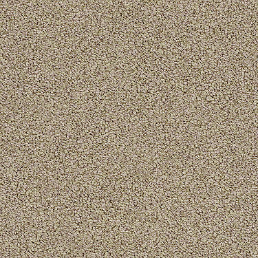 Waterfront Residential Carpet
