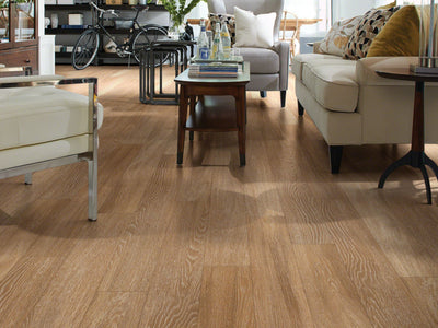 Room Image of Shaw Floors Bella Plus Sfa Unit flooring in the color Duomo available at Standard Paint and Flooring.