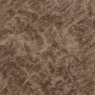 Special 100 Residential Carpet