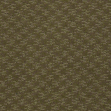 Modern Beat Residential Carpet