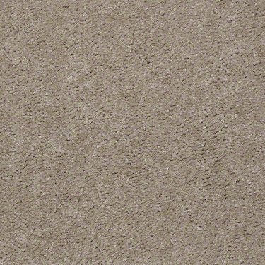 This Is It Residential Carpet