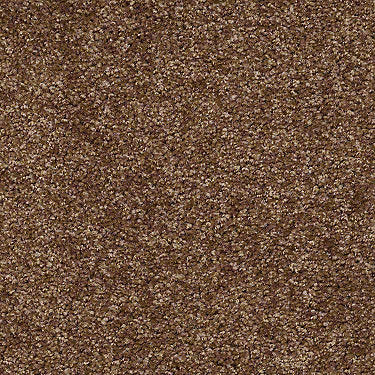 Full Of Life Residential Carpet