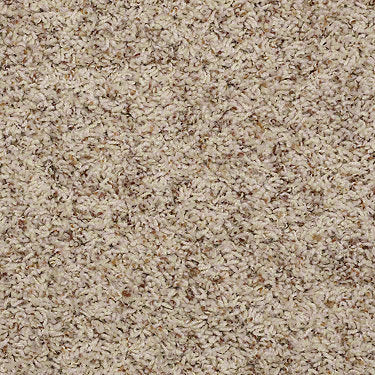 Acworth Residential Carpet