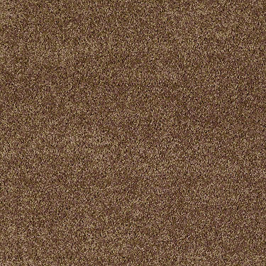 Full Court 12' Residential Carpet