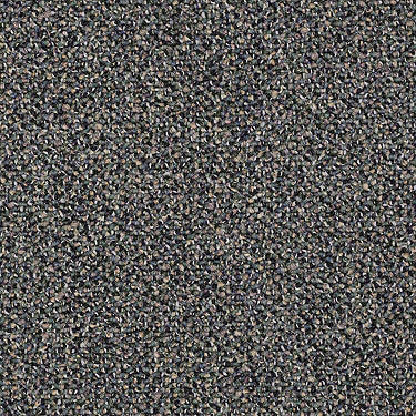 Sable Island Commercial Carpet