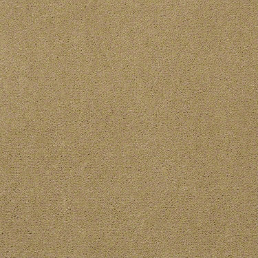 Emphatic II 30 Residential Carpet