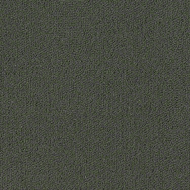 Color Accents Commercial Carpet