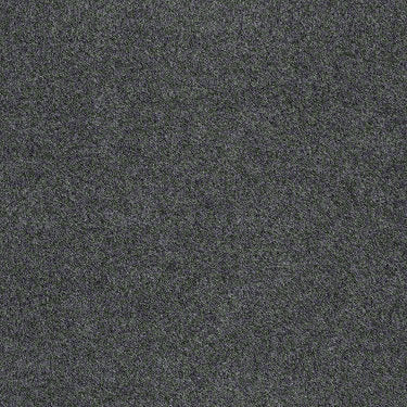 Softscape I 12 Commercial Carpet