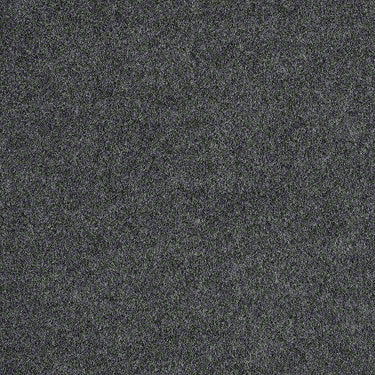 Softscape I 6 Commercial Carpet