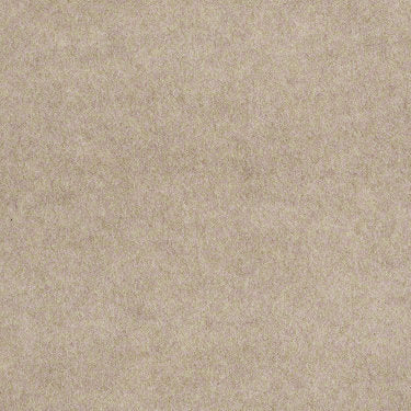 Softscape II 6 Commercial Carpet