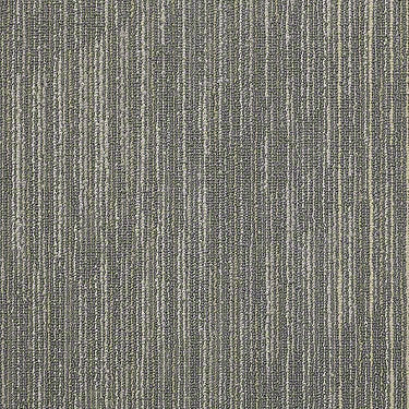 Successive 18X36 Commercial Carpet