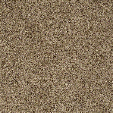 Great Beginnings (A) Residential Carpet