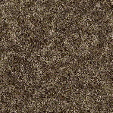 Starting Out Residential Carpet