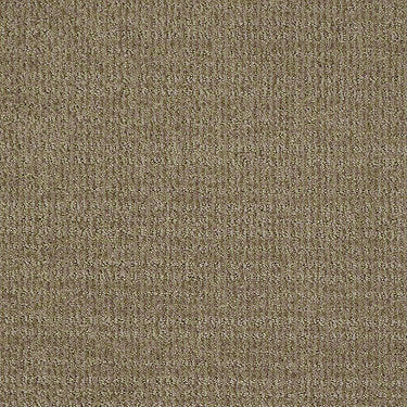 Unleashed Residential Carpet