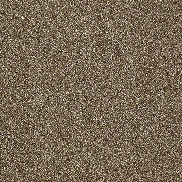 Canvas Residential Carpet