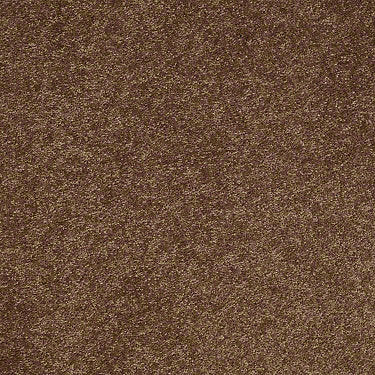 Challenge Accepted II 12 Residential Carpet