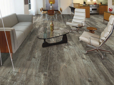 Room Image of Shaw Floors Transcend Resilient Residential Unit flooring in the color Alpaca available at Standard Paint and Flooring.