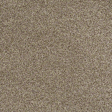 You Found Me Residential Carpet