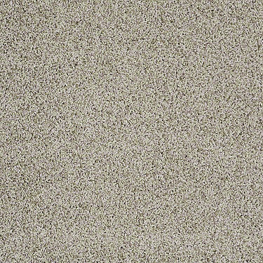 Subtle Shimmer I Residential Carpet