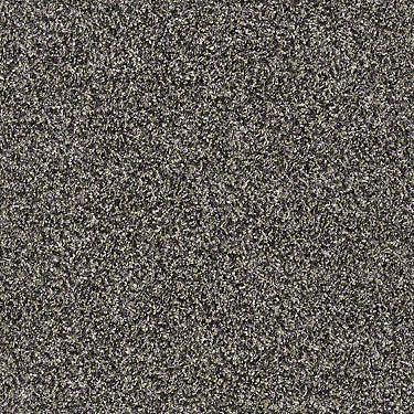 Absolutely It Residential Carpet