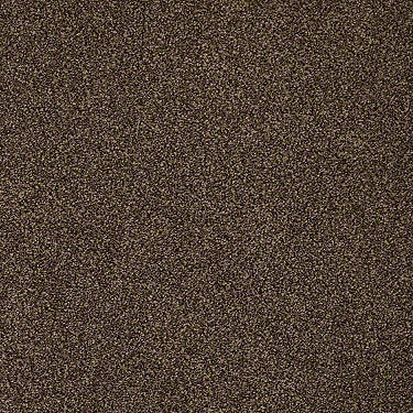 Four Seasons Residential Carpet
