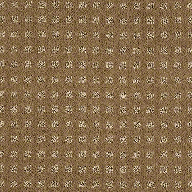 Great Design Residential Carpet
