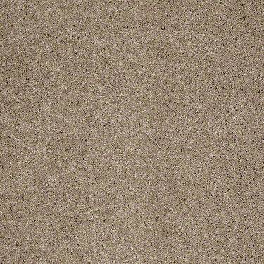 Flora Residential Carpet