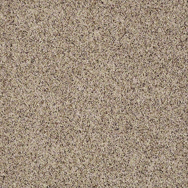 Point Sal Residential Carpet