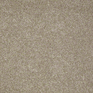 Grand Appearance Residential Carpet